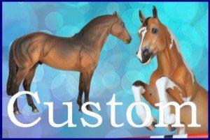 custom (2)